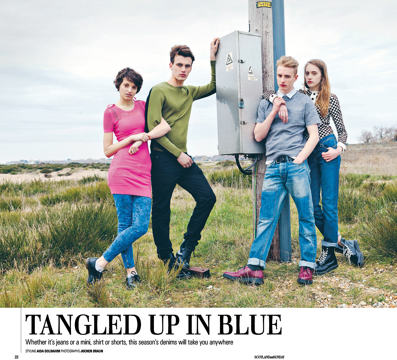 Tangled Up in Blue   |   Spectrum